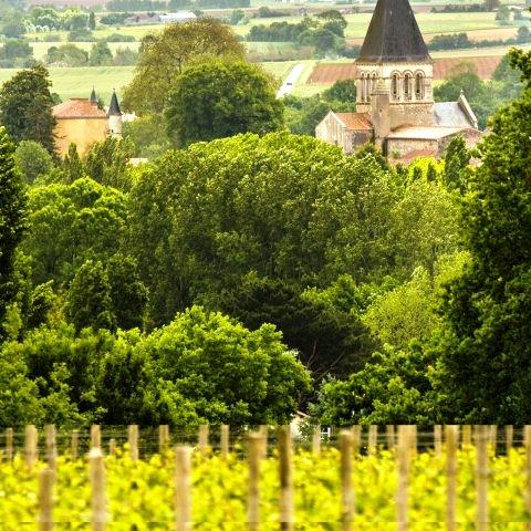 Mareuil-sur-Lay, Fiefs Vendéens, Domaine Mourat,