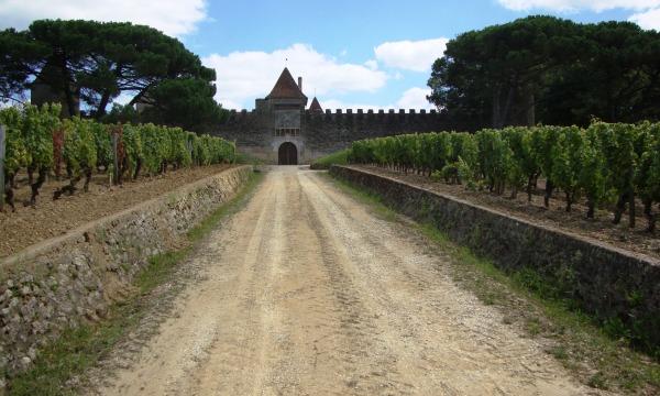 Yquem, une allure de château fort dans les vignes