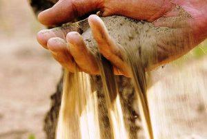 Le sable constitue 90 % du terroir